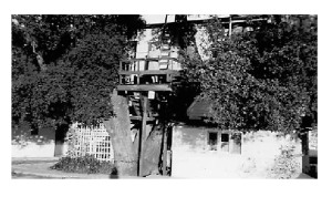 Tree house home in Atascadero