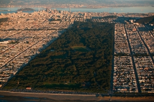 The vast expanse of San Francisco's Golden Gate Park