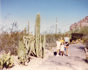 The Sonoran Trail