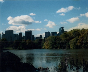 A view of New York from Central Park